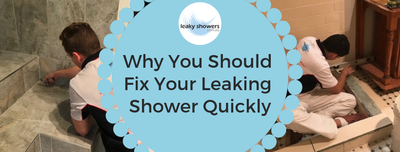 6 reasons to fix a leaking shower fast